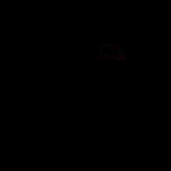Carrera assenset Evolution en Digital 132 - 89655